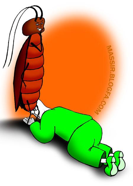 سوسک و راه مبارزه با سوسک ها،سمپاشی اصولی سوسک فاضلاب،سمپاشی منازل در تهران،سمپاشی،شرکت معتبر سمپاشی