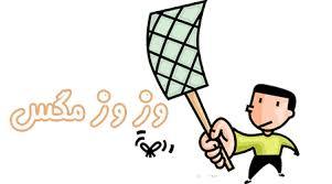 روشهای مبارزه با مگس،سمپاشی مگس،سمپاشی پشه،سمپاشی حشرات پروازی،سمپاشی ،سمپاشی اصولی،سمپاشی منازل