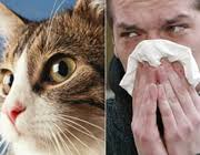 حیوانات اهلی ، حیوانات خانگی ، آسم ، آسم کودکان ، آلرژی ، عوامل آلرژن و حساسیت زا