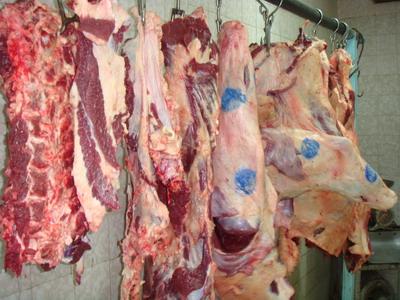 بهداشت گوشت ، بهداشت و بازرسی گوشت ، گوشت سالم ، گوشت بهداشتی ، میکروب در گوشت