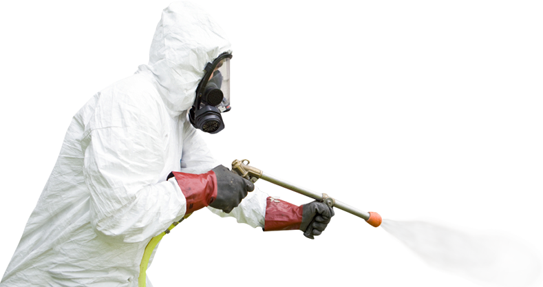 اصول سم پاشی ، سم پاشی ، سمپاشی ، کارشناسان سمپاشی ، سمپاشی حشرات ، حشره کش ، سموم شیمیایی