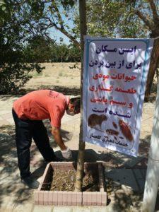 سمپاشی موش در شمال تهران ،سمپاشی تضمینی موش ، سمپاشی تضمینی ، سمپاشی